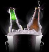 Beer bottles in ice bucket — Стоковое фото