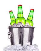 Butelek piwa w wiaderku lód na białym tle — Zdjęcie stockowe