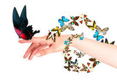Butterfly on woman's hand. In motion — Stock Photo