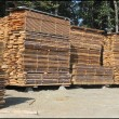 Stacks of timber planks — Stock Photo