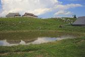 Alpine puddle in the rain, Slovenija — Stock Photo