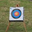 Stock Photo: Punctured archery target