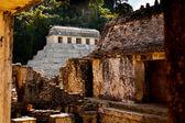 Ruiny palenque — Zdjęcie stockowe