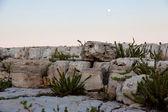 Paesaggio roccioso — Foto Stock