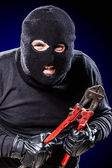 Creepy Housebreaker — Stock Photo