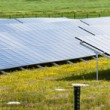 Solar panels panorama — Stock Photo