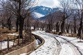 Camino a las montañas — Foto de Stock