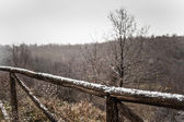 Snowy fence — Stock Photo
