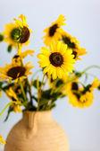 Sunflowers Closeup — Stock Photo