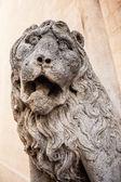 Kamienny lew — Zdjęcie stockowe