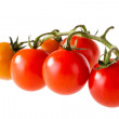 Stock Photo: Small tomatoes
