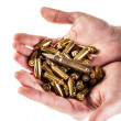 Load of bullets — Stock Photo