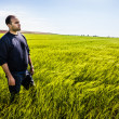 Standing in the grass — Stock Photo #39125943