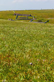 Sheep fold — Stock Photo