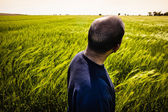 Man in green field — Foto de Stock