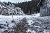 Frozen grounds — Stock Photo