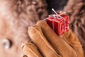 Small christmas gift — Stock Photo