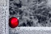 Hoary christmas — Stock Photo