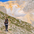 Woman Hiking with Backpack in Mountains on top with glacier snow and rocks on background — Foto Stock