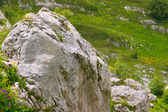 Rock Stone in green valley Caucasus Mountains Landscape Summer day — Stock Photo