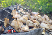 Grilled White Meat preparing shish kebab Barbecue fresh Food Picnic Outdoor — Stock Photo