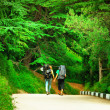 Couple of Hiker Tourists walking on road in beautiful Pine-tree forest Park holding hand in hand with backpack Traveling and Healthy Lifestyle concept — Zdjęcie stockowe