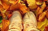 Höstens bakgrund med fall blad och kvinnan skor stövlar gyllene — Stockfoto
