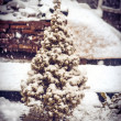Little Fir Tree with Snow on branches and Snowflakes Winter symbol of New Year holiday — Stock Photo
