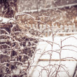 Snowfall Winter Weather in village with snowflakes falling on branches tree — Stock Photo
