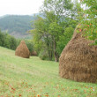 Two haystacks on the slope of a green hill — Stock Photo