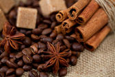 Still life of coffee beans, stars of anise, brown sugar and cinnamon sticks — Stock Photo