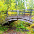 Pedestrian bridge over a small creek in the national park, the Krasnoyarsk region - Stock Photo