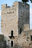 S observatory in the Kalemegdan fortress in Belgrade — Stock Photo