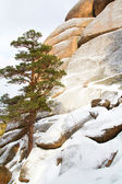 "Rock formations in the Krasnoyarsk National Park ""Stolby"" — Stock Photo"