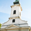 The Orthodox Church in a Serbian town — Stock Photo #21271493