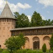 Wall and tower Spaso-Euthymius monastery in Suzdal — Stock Photo