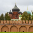 The red brick Kremlin wall and domes of the Church and church school in Tula — Stock Photo #32536495