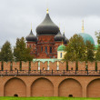 The red brick Kremlin wall and domes of the Church and church school in Tula — Stock Photo