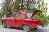 Old car loaded with freshly cut grass — Stock Photo