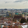 Kind to Prague from Prague castle — Stockfoto #15757941
