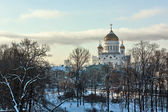 Cathedral of Christ the Saviour,Moscow,Russia — ストック写真