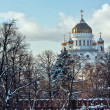 Stock Photo: Cathedral of Christ Saviour,Moscow,Russia