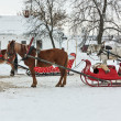 Horses with sledge in Suzdal, Russia — Stock Photo