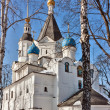 Church of the Dormition of the Theotokos in Veshnyaki, Moscow — Stock Photo