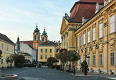 Szekesfehervar, Hungary — Stock Photo
