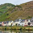 On the banks of the Mosel river,Germany - Stock Photo