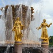 Fountain friendship of the , Moscow — Stock Photo