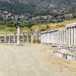 Ancient Messene, Greece — Stock Photo #28533395