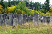 Old Jewish cemetery, Brody, Ukraine — Stock Photo