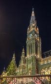Town hall of the Vienna, Austria — Stock Photo